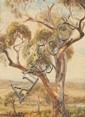 AUDREY EDITH GREENHALGH (B. 1903), TREE ON THE
