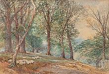 MYLES BIRKETT FOSTER (1825-1899) A WOODLAND GLADE