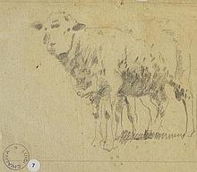 CHIALIVA Luigi,  1842-1914 [CH]. Ensemble de trois dessins représentant des brebis et des moutons,  crayon sur papier (respectivement 18.5 x 30.5, 31 x 20 et 14 x 16 cm).
