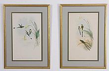 (6) 19th c. framed lithographs