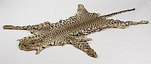 Circa 1920s leopard skin rug