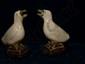 Objet de lettré, paire de goutte à goutte cizhu illustrant des oies en fin grès porcelaineux  à glaçure bicolore décoré d'oxyde de brun sur fond beige. Chine. Dynastie Ming. 1368 à 1644.Restauration au cou.