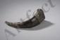 Boite à médecine de chamane exorciste. Corne de buffle enluminé de deux embouts en argent repoussé à motifs zoomorphes et rinceaux. Tibet. 19 ème siècle. 20cm.
