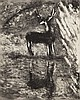 MARC CHAGALL Original Etching French Russian Fontaine 1927-1930