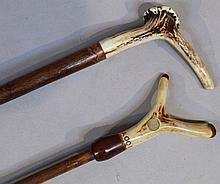 An ash stained crook, with horn handle, 126cm and