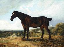 Manner of James Ward (1769-1859). Bay Hunter, oil