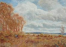 Forster, Robson (Exh. 1888-1906). A Stormy Sky, wa