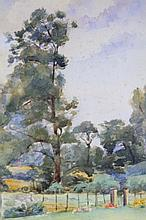 20thC School. Trees on a summers day, watercolour, unsigned, 24.5cm x 14.5cm.