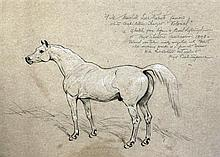 Basil Nightingale (1860-1940) Study of Field Marshall Lord Robert's stallion Volonel, 14 x 19in.