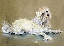 Marjorie Cox (20th C.) Portrait of a white terrier 'Daisy', 12 x 16in.