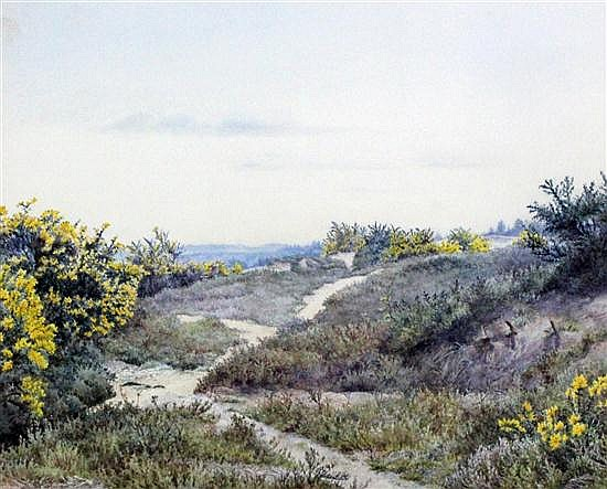 Attributed to Eliza Pratt Greatorex (1820-1897) Gorse on sand dunes, 9 x 11.25in.