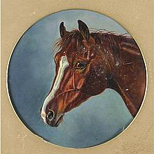 Horses Head. 7 ins. circular, (17.75 cms.), Oil on Canvas. There is a signa
