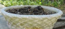 Antique Reconstituted Stone Oval Garden Planter