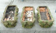 Three Faux Terra Cotta Planters with Moss