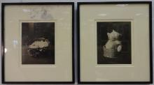 Pair of Framed Black+White Photographs of Kittens