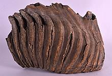 A FOSSILIZED MAMMOTH TOOTH of naturalistic form. 8Ins x 6.5ins.