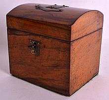 AN UNUSUAL 19TH CENTURY CARVED WOOD TEA CADDY with