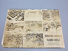 1936 Sunbury PA Flood Ariel Photo Compilation Poster