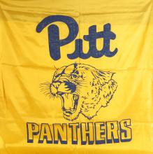 University Pittsburgh Panthers Silk Banner