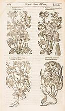 (BOTANY) GERARD, JOHN. The Herball... London, 1636. Second edition.