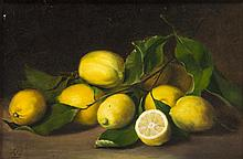 Artist Unknown, (19th/20th Century), Still Life with Lemons