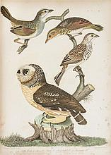 WILSON, ALEXANDER. American Ornithology. Philadelphia, 1808-1814. 9 vols. in 3. [with] Bonaparte. Natural History of Birds. 4 vols in 1