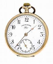 Herrentaschenuhr Chronometer Rio GG 585/000 Staubd
