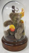 Steiff Rare Little Teddy 4 inches #0202/11 produced 1968-1990 with Ear Tag and Button and More. EC