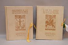 Set French Vellum Books, 1911 Illustrated by Arthur Rackham