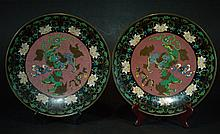Pair of Large Chinese Cloisonne Plates