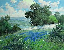 Robert Pummill, Hill Country Splendor