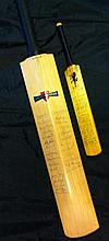 CRICKET: A Gray Nicolls Stuart Leary autograph