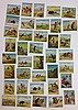 38 Hassan Indian life in the 60s Tobacco cards