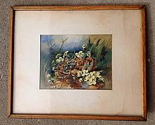 Watercolor floral still life signed Nice