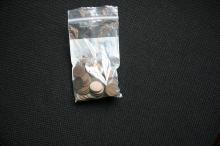 Bag of Indian Cents