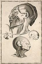 Cant, Arent  Impetus Primi Anatomici ex Lustratis Cadaveribus Nati. Mit gest. Titelvignette u. 2
