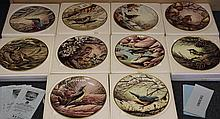 10 x RSPB Collection Wedgwood plates inc
