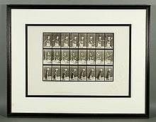 19th C. Eadweard Muybridge Collotype Print