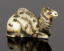 Netsuke Japan. - Kamel - Elfenbein. H. 3,5 cm.