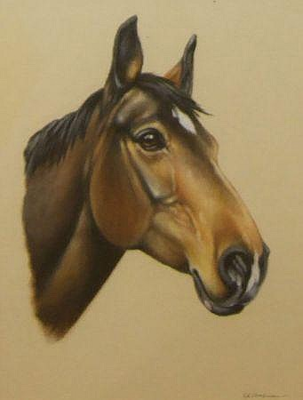 PETER J ROWLES CHAPMAN, SIGNED, PASTEL, A Horses