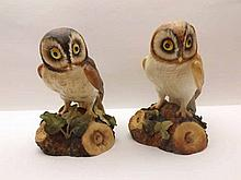 """Royal Crown Derby Models, Barn Owl and Brown Owl, both approx 6"""" high (2)"""