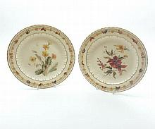 A pair of late 19th Century Crown Derby floral decorated Plates, with gilt