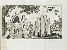 AFRIKA - Sparrmann, André. Voyage au Cap de Bonne