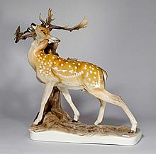 LARGE MODEL OF A DEER GRAZING, Nymphenburg, 20th