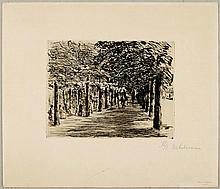 LIEBERMANN, MAX(1847 Berlin 1935)Reitweg im