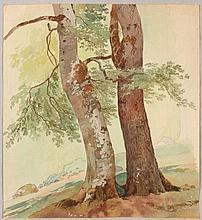 TOEPFFER, WOLFGANG ADAM (Geneva 1766 - 1847 Morillon Two t