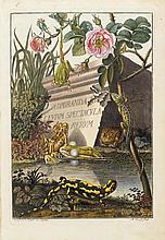 ZOOLOGIE - Rösel von Rosenhof, August Johann. Historia naturalis ranarum no
