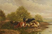 Davis, William (1812-1873)  Irlande/Ireland - Cows