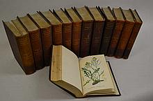 Thirteen volumes ' Sowerby's English Botany ', Third Edition, edited by John T. Boswell Syme, 1902, with leather bound spines and hand coloured plated