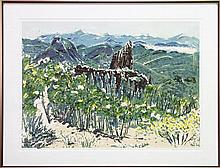 Mary Williams (1957 -) - Warrumbungles Wildernness 57.5 x 79.5cm